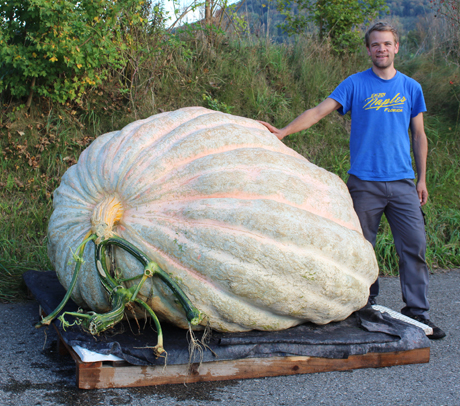 world-record-pumkin