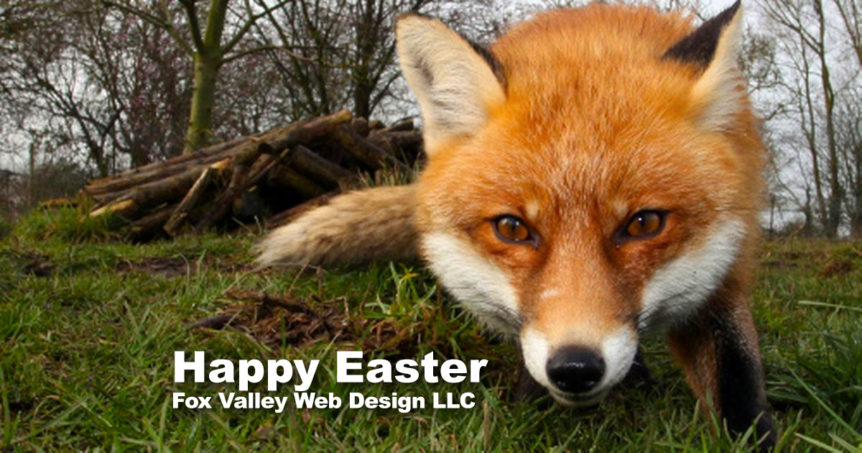 Happy Easter, FVWD, Fox Valley Web Design, Wisconsin website designers, American Web Design, web design agency, ecommerce website design, freelance graphic designer, best seo company, web seo, affordable web design, professional seo services, website developer, brand build, graphic design portfolio