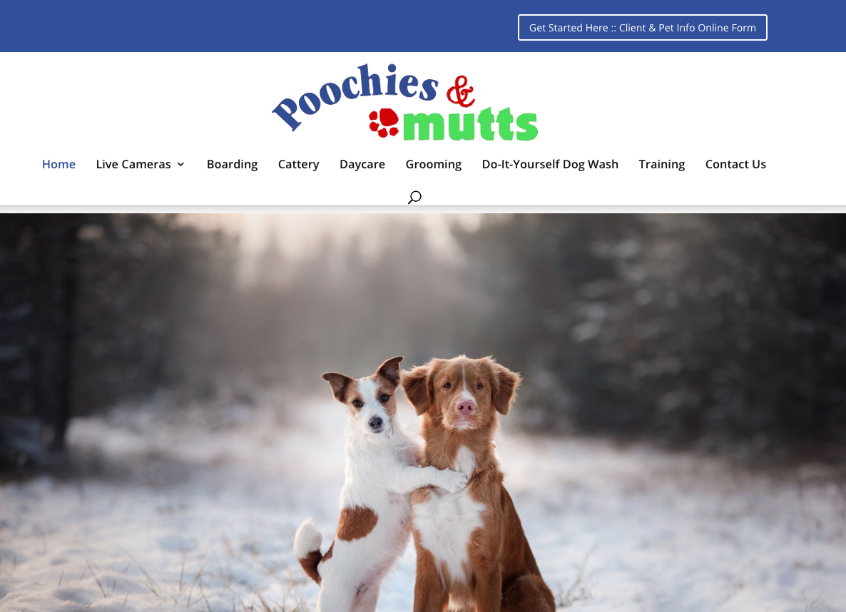 Poochies & Mutts • Fort Howard / Green Bay Dog Boarding & Cattery
